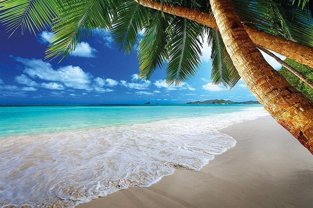 poster géant mer et palmier