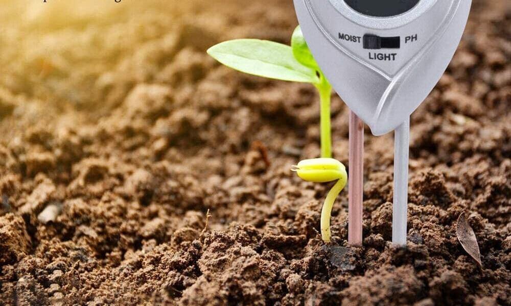 VIFERR Testeur dhumidit/é du Sol et Testeur de Niveau de PH pour Plantes
