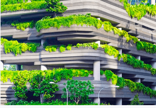 balcon rempli de verdure